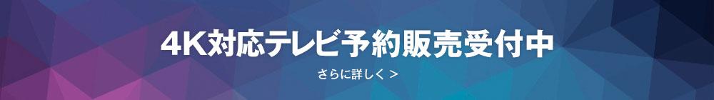 4K対応テレビ予約販売受付中